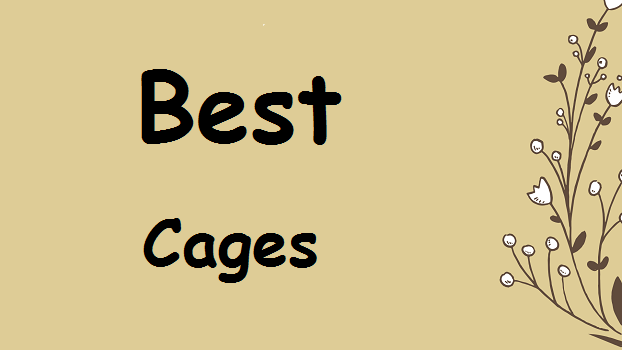 best-canary-cages