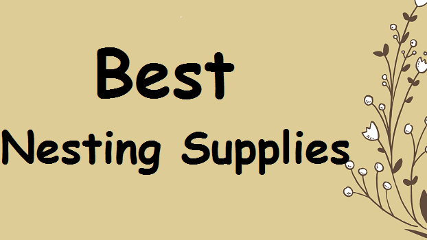 best-canary-nesting-supplies