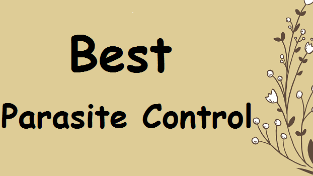 best-canary-parasite-control