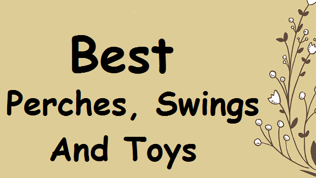best-canary-perches-swings-toys