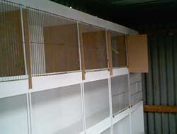 cagefronts_1