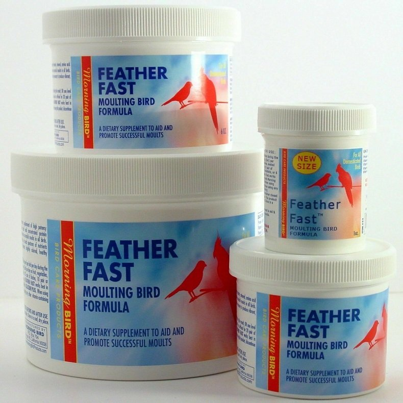 father-fast-bird-molting-supplement